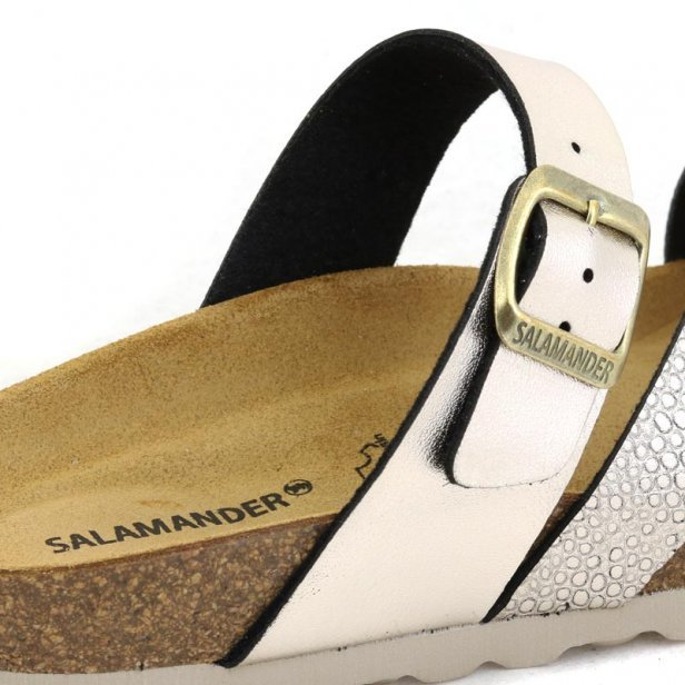 Salamander 32-13013-37